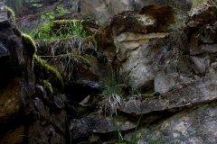 cheryl_goff-canyon_rock_walls