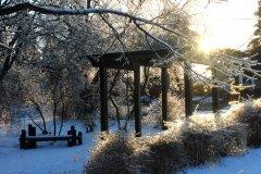 cheryl_goff-frozen_parkland-263