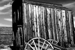 Cart-Bodie