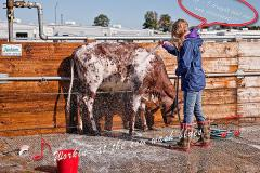 S2-Workin-at-the-Cow-Wash-Blues...OMG-I-Thought-That-Dye-Was-Permanent-EO-D