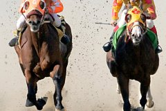 peter_clute-jockeying_for_the_lead-113